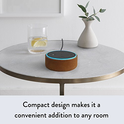 Amazon Echo Dot (2nd Gen)